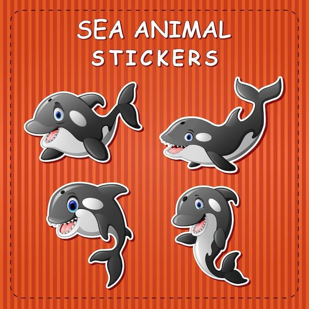 Cute cartoon orca whale on sticker Premium Vector