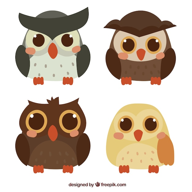 Cute cartoon owl collection