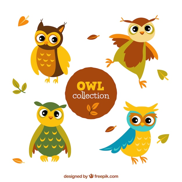 Cute cartoon owl pack