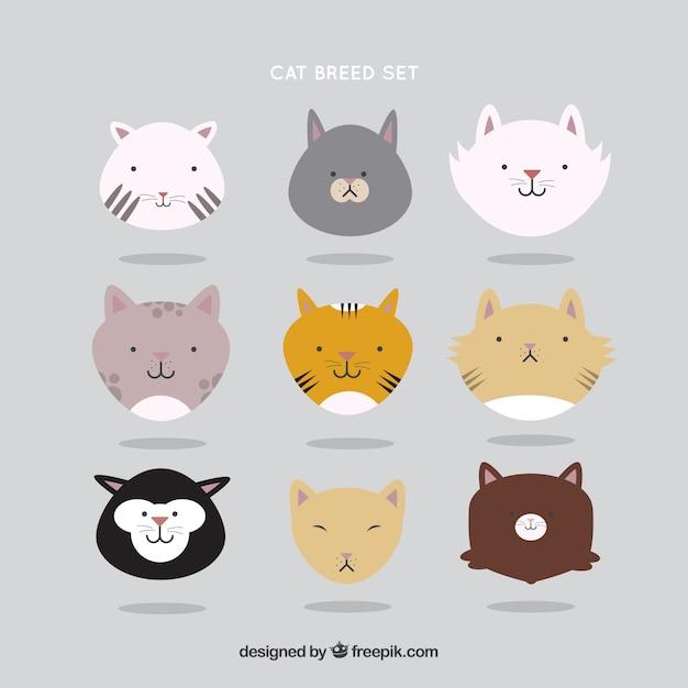 Cute cat breed set
