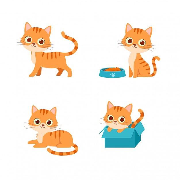 Cute cat pet animal playing pose style set bundle Premium Vector