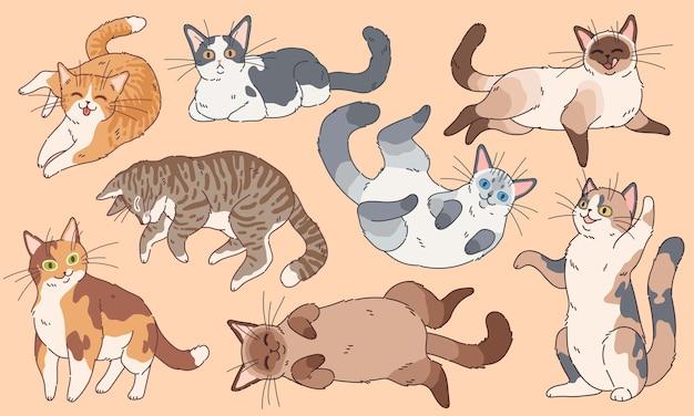 Милые кошки. забавные котята разных пород, домашние животные, спящие и играющие в мультяшный счастливый котенок, рисование персонажей логотипа Premium векторы