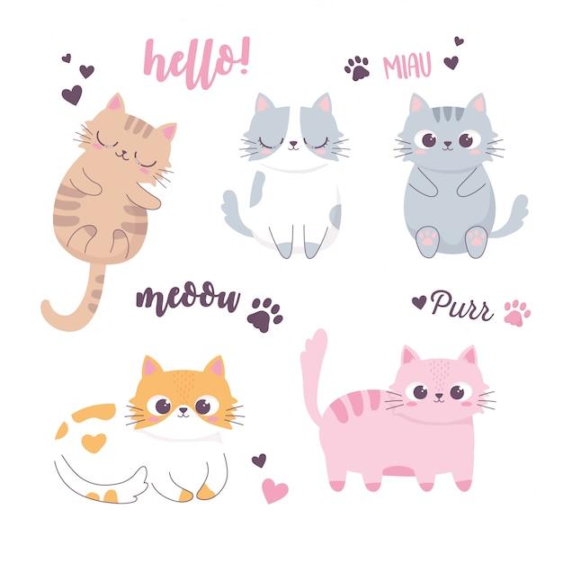 眠っているかわいい猫と異なる品種の面白い動物漫画のキャラクター Premiumベクター