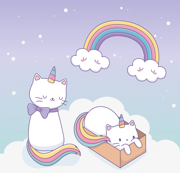 Cute cats with rainbow tail and carton box kawaii characters Premium Vector