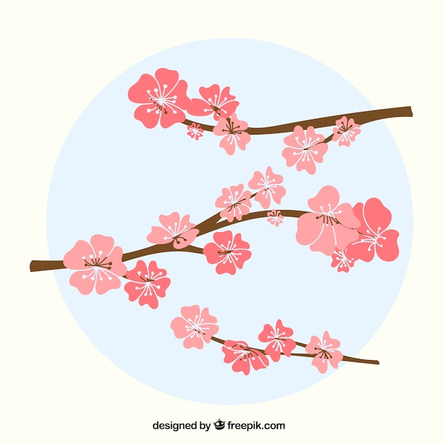 Cute cherry blossom background Free Vector