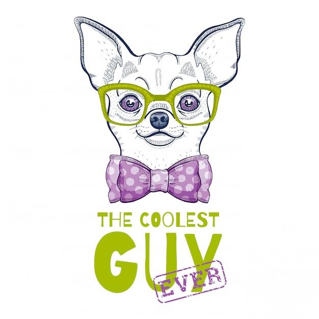 Милая собака чихуахуа иллюстрации Premium векторы