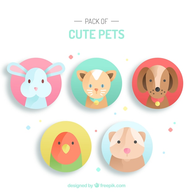 Cute collection of lovely pets