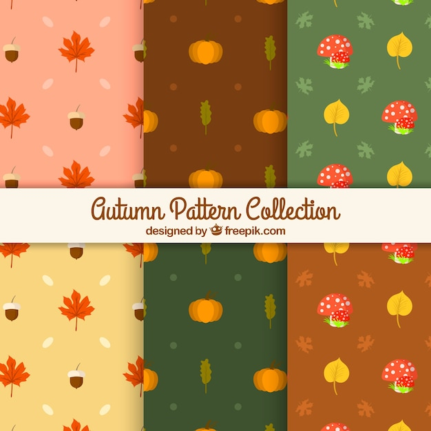 Cute collection of patterns with autumn leaves