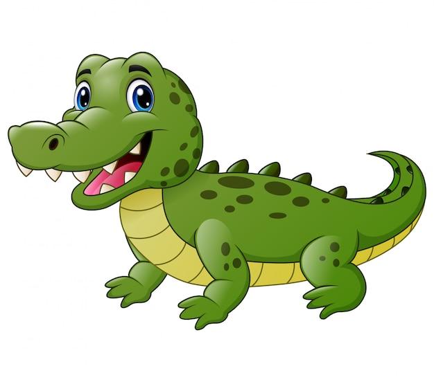 Милый мультфильм крокодил, изолированные на белом Premium векторы