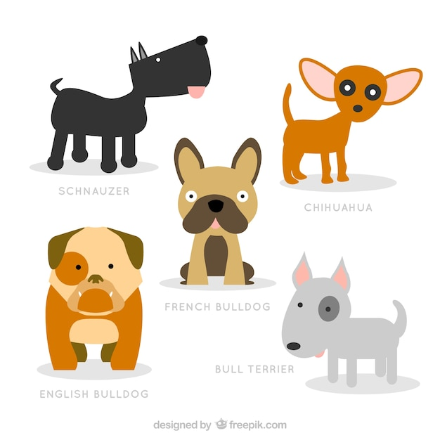 Cute Dog Breeds Illustration Vector Premium Download