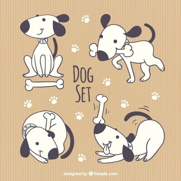 Cute dog collection Free Vector