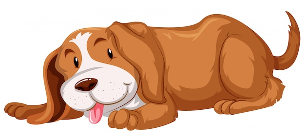 Cute dog with brown fur Free Vector