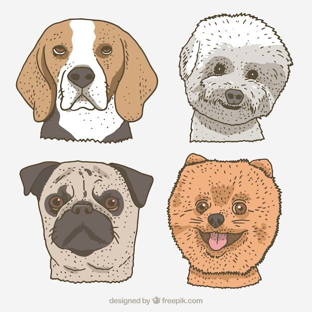 Cute dogs in hand-drawn style