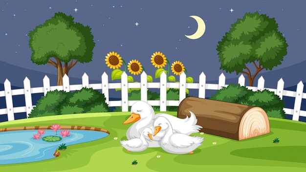 Cute duck sleeping on grass Free Vector