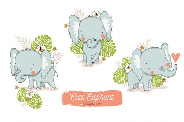 Cute elephant baby. jungle animal cartoon character. Premium Vector