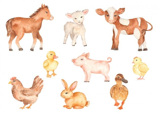 かわいい農場の動物の水彩画 Premiumベクター