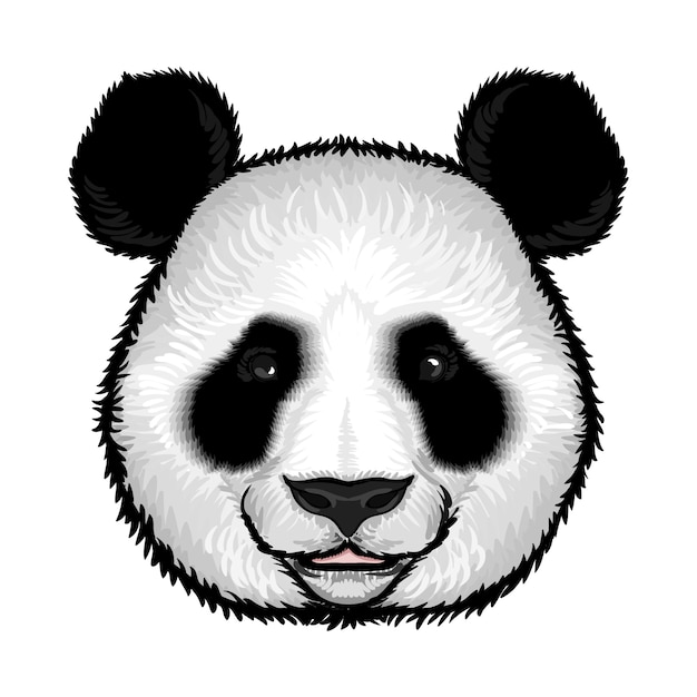 Симпатичная пушистая панда Бесплатные векторы