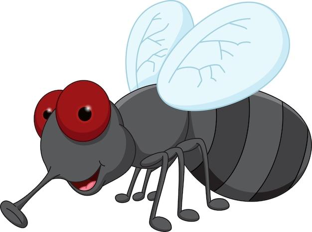 Cute fly cartoon | Premium Vector
