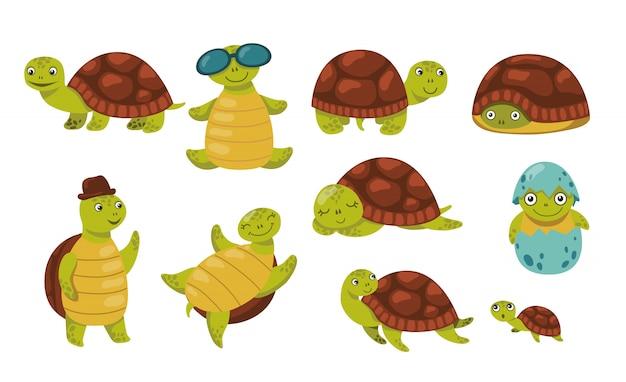 Милый смешной набор черепах Бесплатные векторы