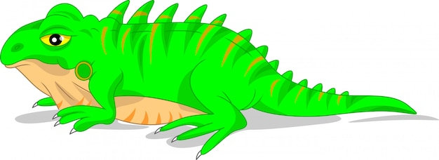 Cute green iguana lizard Premium Vector