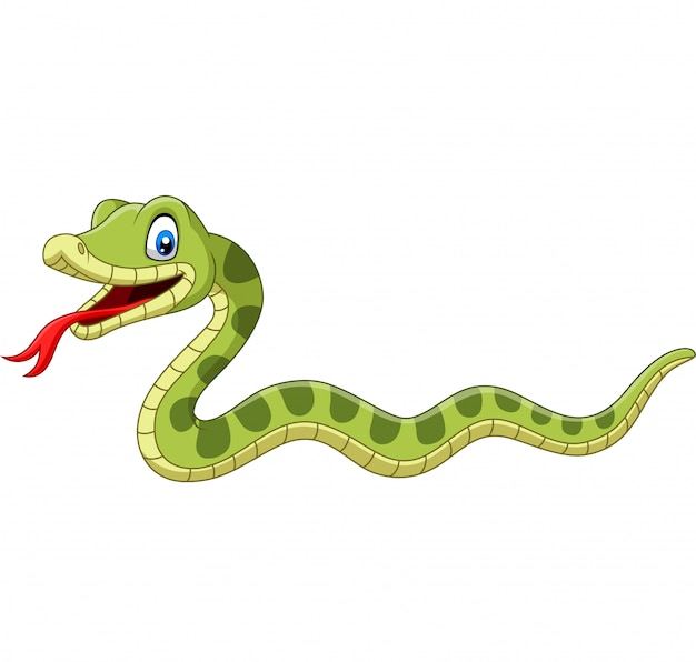 Cute Green Snake Cartoon Isolated Premium Vector