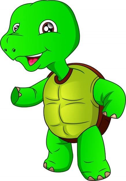 Мультфильм милая зеленая черепаха на белом фоне Premium векторы