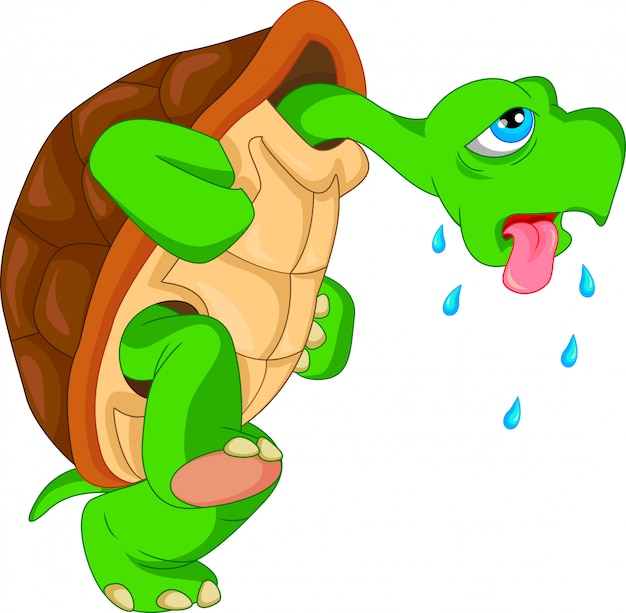 Cute green turtle cartoon Premium Vector