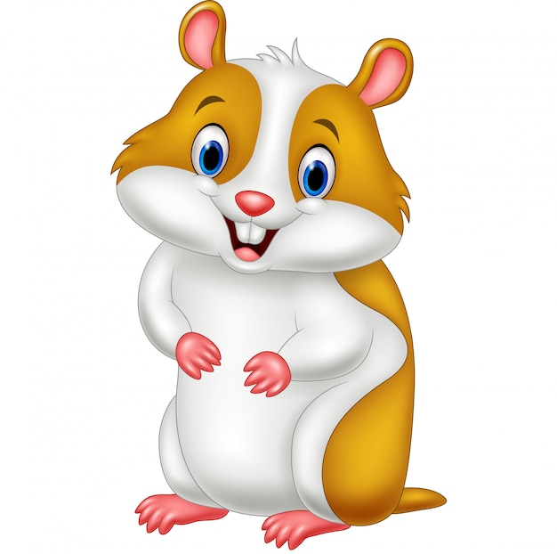 Cute hamster cartoon Premium Vector