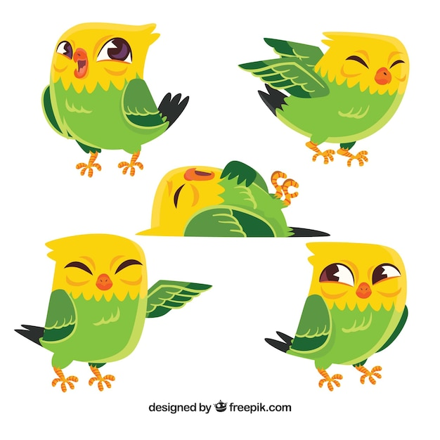 Cute hand drawn bird collection Free Vector