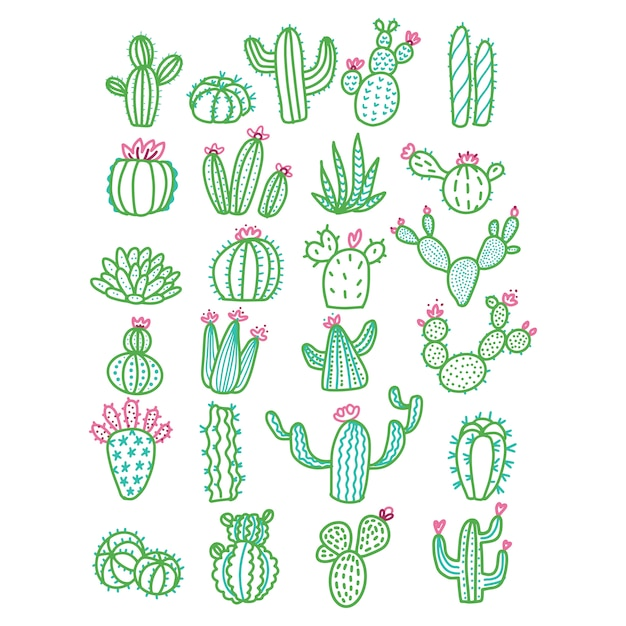 Cute hand drawn cactus without pots color outlined illustration. Premium Vector