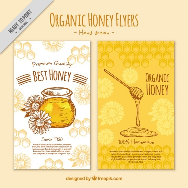 Cute Hand Drawn Honey Flyer Vector Free Download