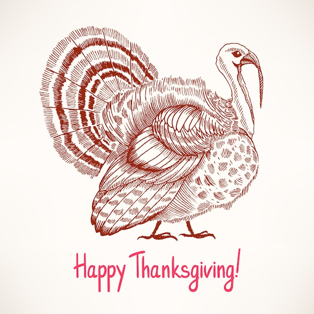 Cute hand drawn turkey. sketch. card for thanksgiving day Premium Vector