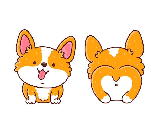 かわいい幸せなコーギー犬の前面と背面 Premiumベクター