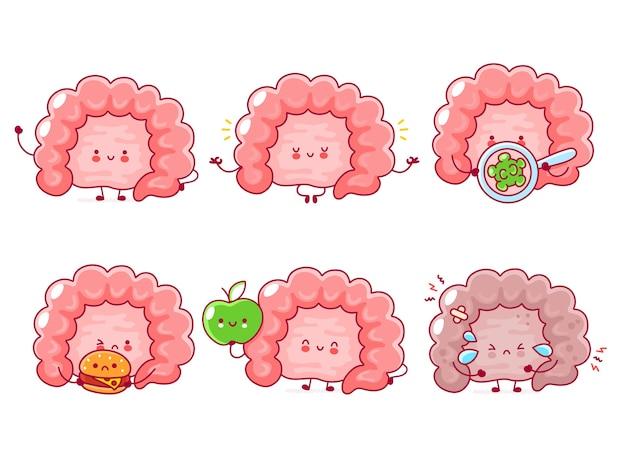 Симпатичная счастливая смешная коллекция человеческих органов кишечника. линия значок иллюстрации персонажа мультфильма каваи. на белом фоне. концепция пищеварительного тракта Premium векторы