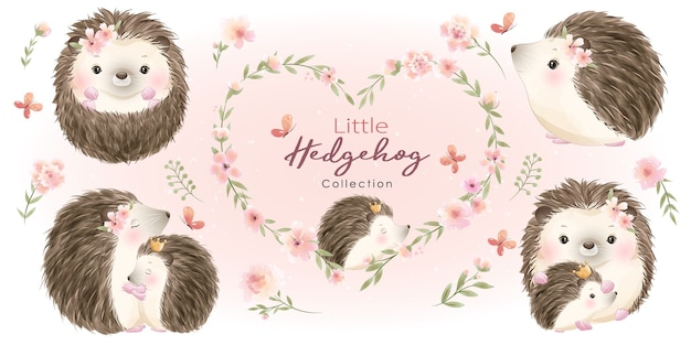 꽃 컬렉션 귀여운 고슴도치 프리미엄 벡터