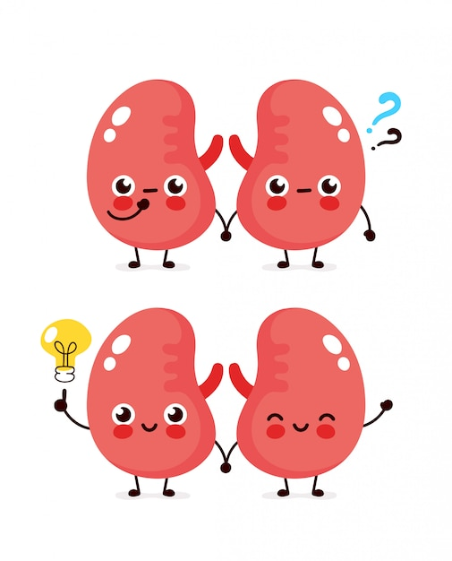 Cute kidneys with question mark and lightbulb character.  flat cartoon character illustration icon . isolated on white . kidneys have idea Premium Vector