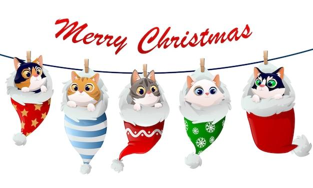 靴下のかわいい子猫のクリスマスパターン Premiumベクター