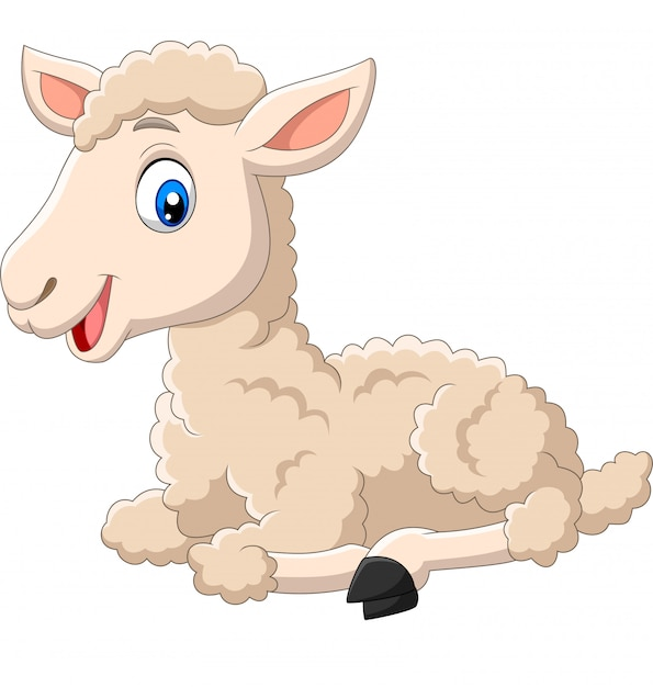 Cute lamb cartoon sitting isolated Premium Vector