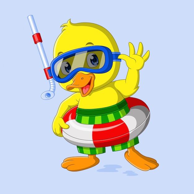 Cute little duck is ready to swim Premium Vector