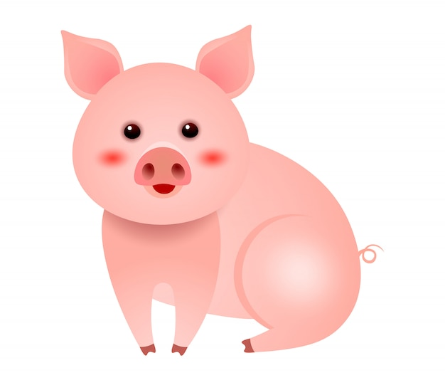 Cute little pig sitting on white background illustration Free Vector
