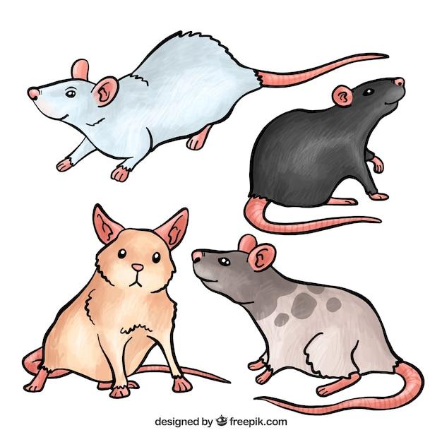 Набор милых мышей Бесплатные векторы