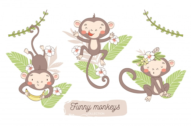 Cute monkey baby. jungle animal cartoon character. Premium Vector