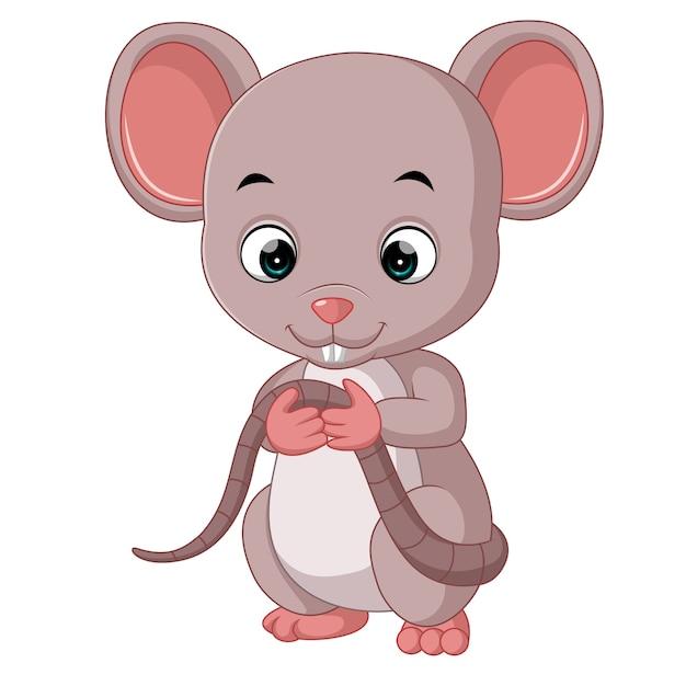 Premium Vector | Cute mouse cartoon