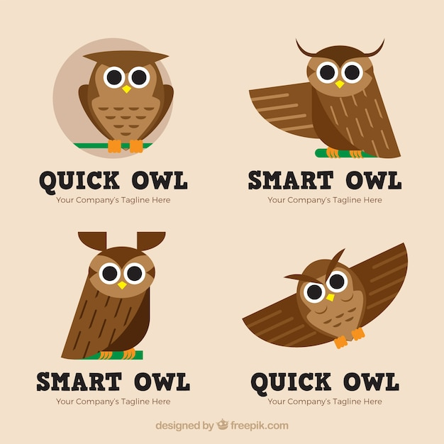 Cute owl logo collection Free Vector