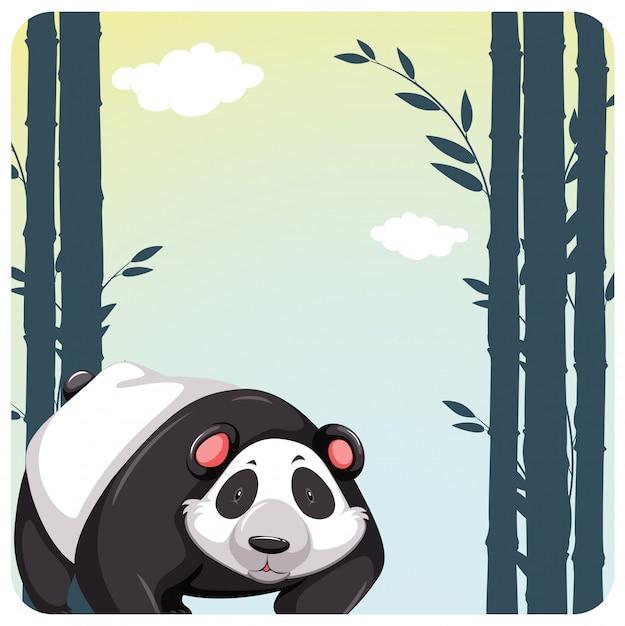 Cute panda Free Vector