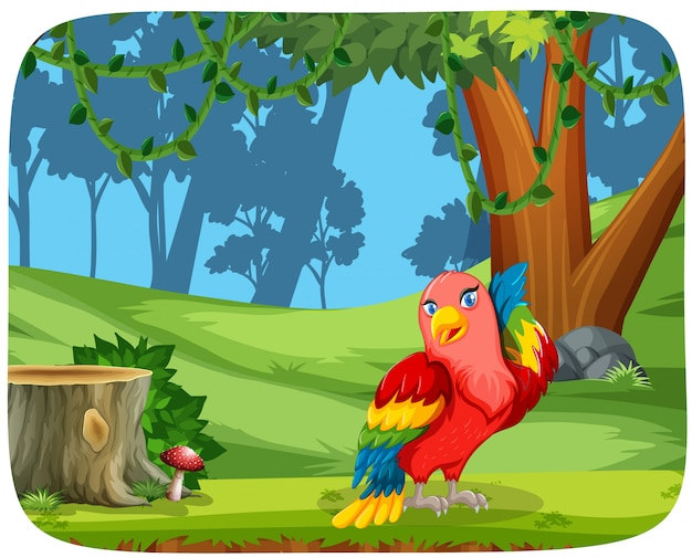 Cute parrot in nature scene Free Vector