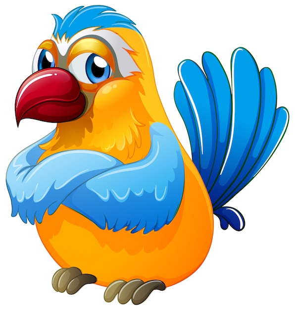 Cute parrot on white background Free Vector