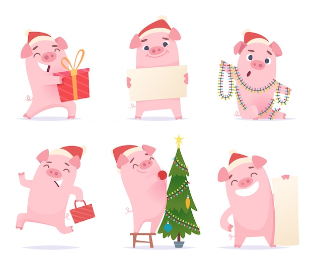 Cute pig. new year 2019 celebration cartoon mascots boar piglet hog  characters in action poses Premium Vector