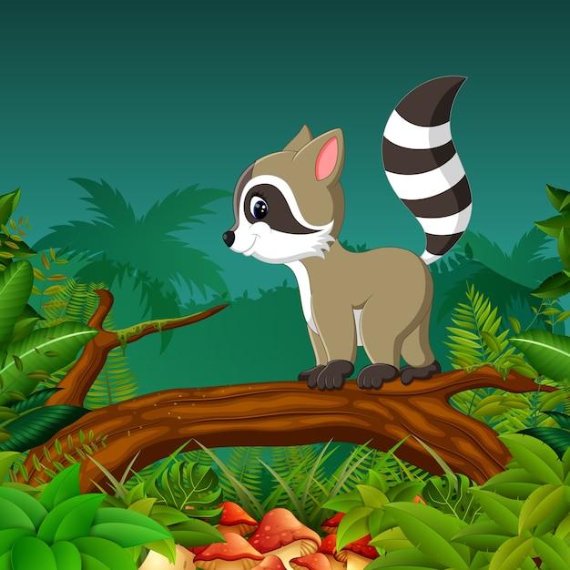 木の上を歩くかわいいアライグマ Premiumベクター