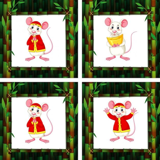 Симпатичные крысы в четырех разных бамбуковых рамах Бесплатные векторы